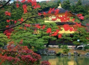 1316523771_japan_garden_02-400x292